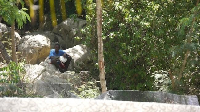 Beggars Denied At Labadee Royal Caribbean S Private